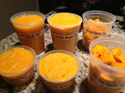 Processed squash for freezing.